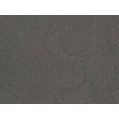 Forest 6072 Glossy Lucido munkalap 4200x600x38mm 10012506490