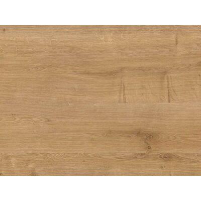 Forest H3303 ST10 Natural Hamilton Oak munkalap 4100x600x38mm 10012553320