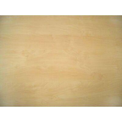Forest H1733 ST15 Mainau Birch munkalap 4100x600x38mm 10012554070